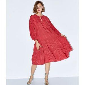 Zara Midi Plumetis Dress